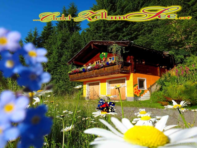 """ The little paradise between heaven and earth !"" - Zell am See - House"
