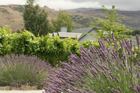 Lovely B&B on Boutique Vineyard - Cromwell