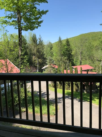 Hillside Cabin with a View (#6) 3min to Belleayre!