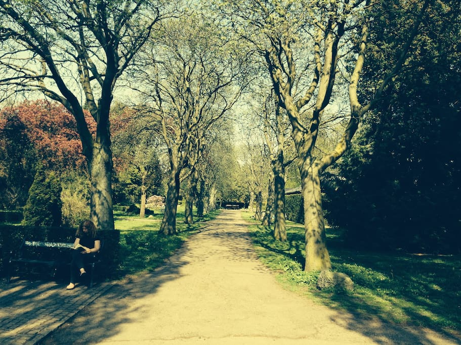 100 meters to the park (Assistens Cemetery).