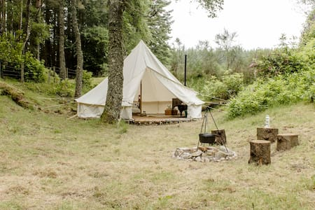 Comfortable camping in whisky country (Birch Tent)
