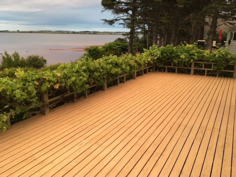 the front deck of the cottage with grape vines bordering the deck