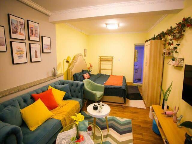 距泉城广场仅300米近宽厚里趵突泉设计师的家周边温馨一居室