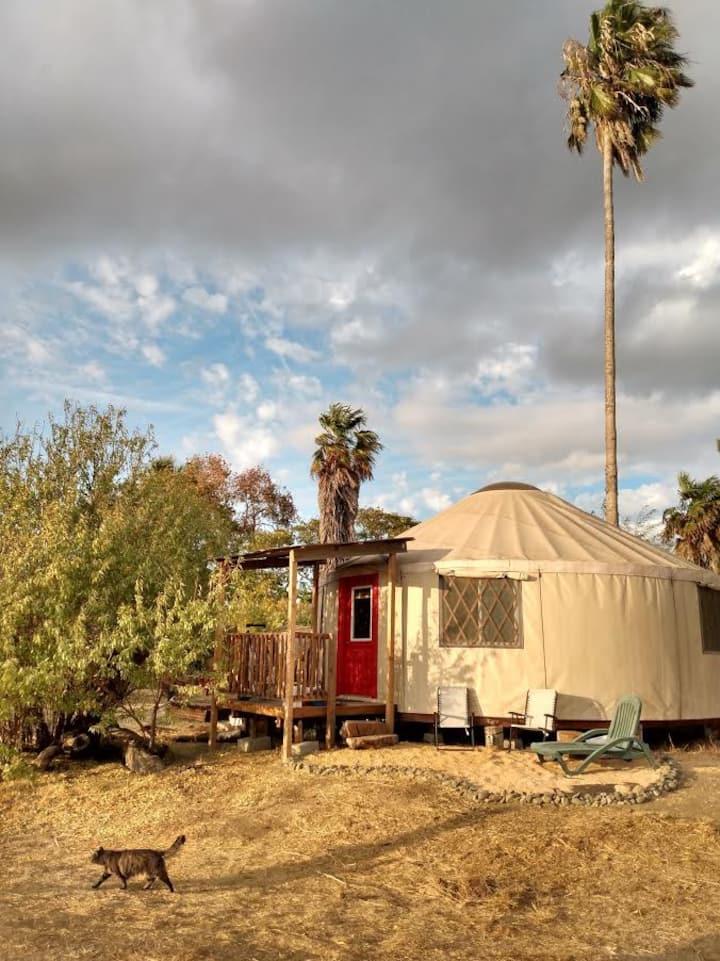 Yolo Yurt
