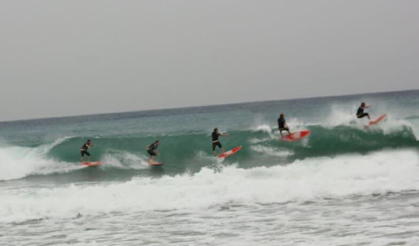 Surf y primera línea de playa de Patos.