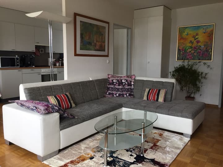 Room in flat near Palexpo, United Nations &airport