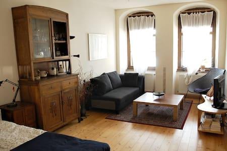 Artist apartment: central, quiet, inspiring