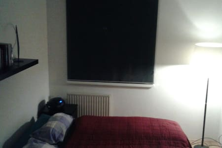 cosy flat SOM area & free snowshoes - Hof bei Salzburg - Appartement