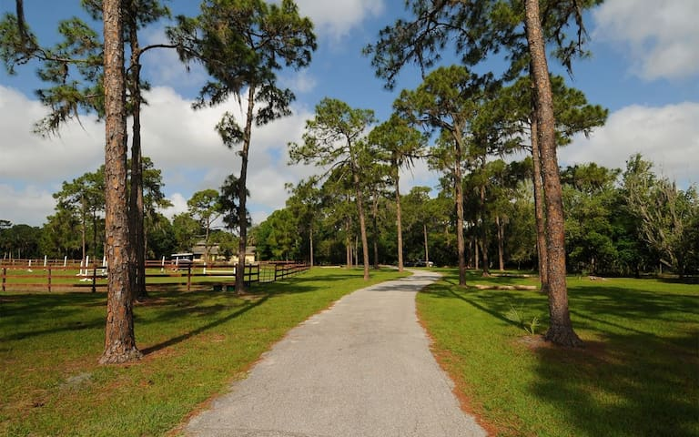 FRONT DRIVEWAY LEADING TO OUR VACATION HOUSE, ATTACHED 1 BEDROOM SUITE AND 1 BEDROOM COTTAGE PROPERTIES!