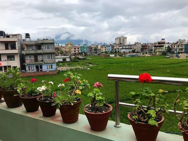 Hidden Gem Green farm side inside Kathmandu.