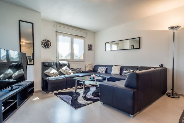 LOVELY BIG APARTMENT NEAR GENEVA AND SKI - Etrembières - Daire
