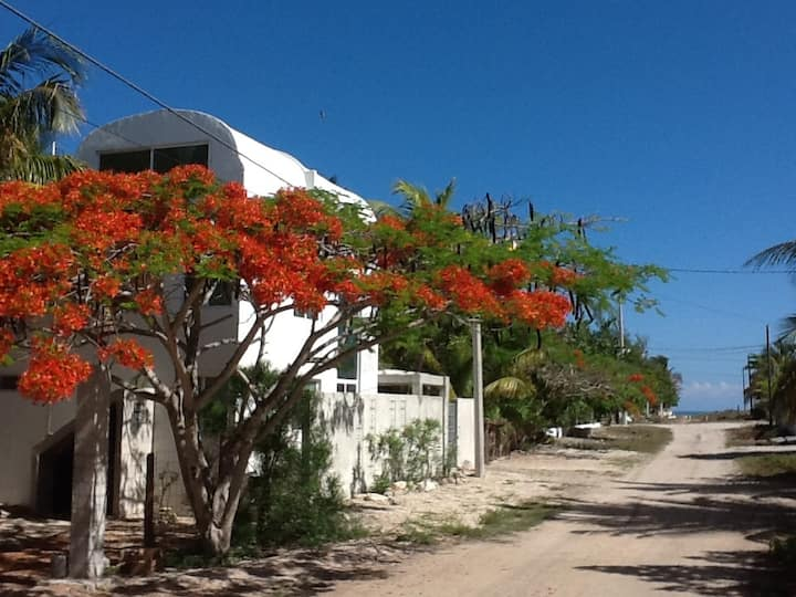 100m from sea, fully furnished house with services