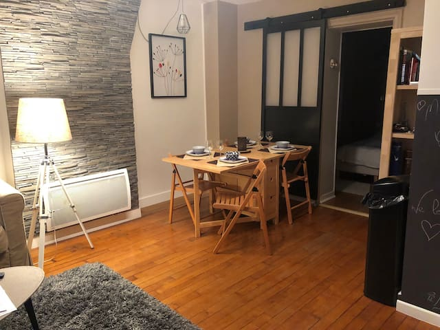 Appartement hyper centre ville F2