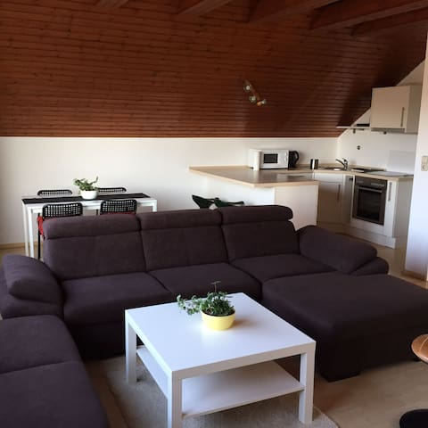 JUST LIKE HOME!!!  38Euro pro Person! - Vellmar - Apartemen