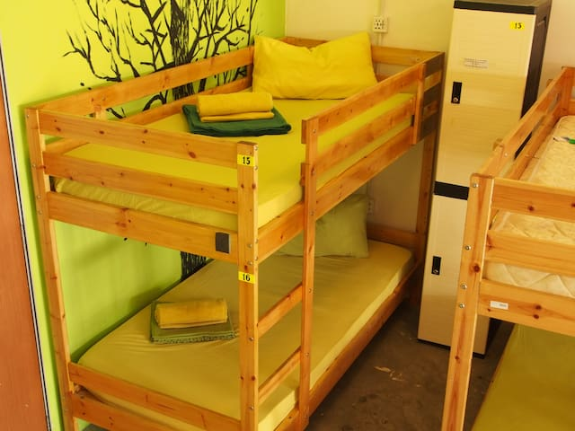 Spacious 16-Bed Male Dorm with FREE Breakfast