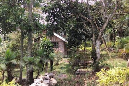 Cabaña Campestre