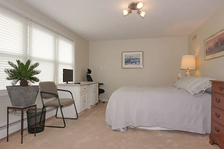 Professional Accommodations! - Marlborough - Daire