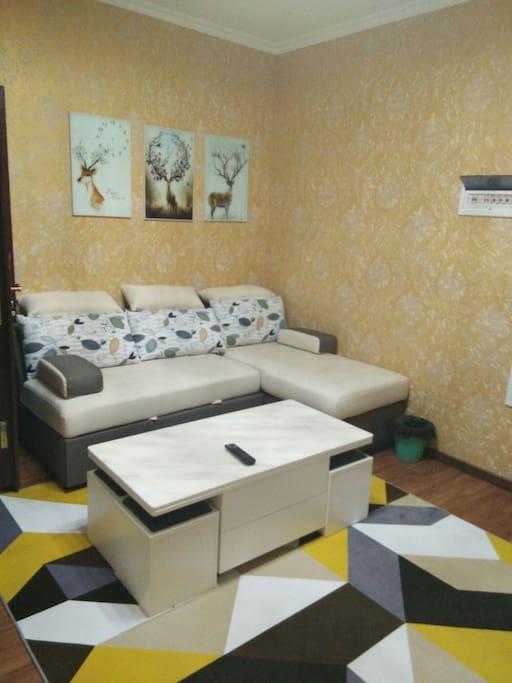 客厅,沙发是一个沙发床。拉开是一个1.5米宽,2米长的床