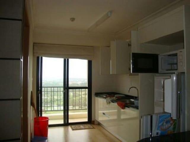 147 - 125 Hai Duong Aparment sunny private balcony
