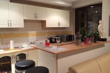 Beau studio entre Nice et Monaco - Apartment