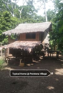 Swampy Home and Tours. Experience our PNG culture.