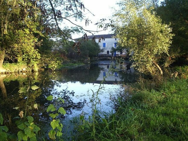Watermill Cottages on the River Seugne in Pons - Pons - Rumah
