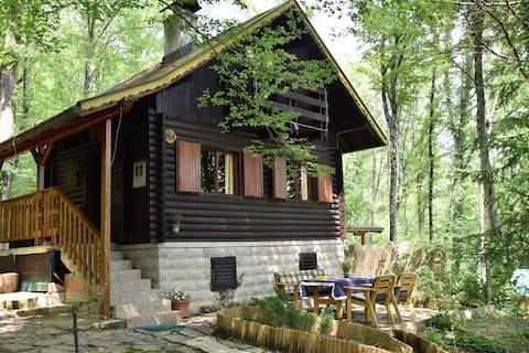 Wooden cottage Bobica