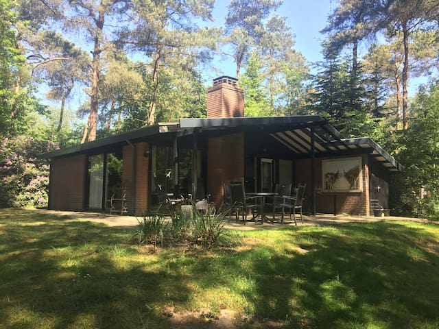 Moderne bungalow in bosrijke omgeving