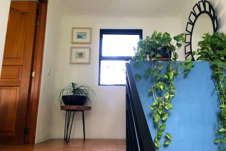 Beautiful and great location - Cruz de Huanacaxtle - Apartment