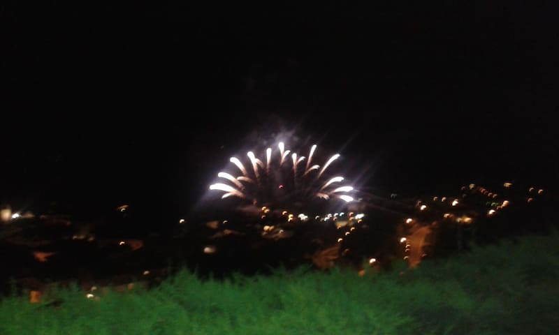 La sera di ferragosto.tempo permettendo,i fuochi d artificio illumineranno il LAGO e il mio giardino.