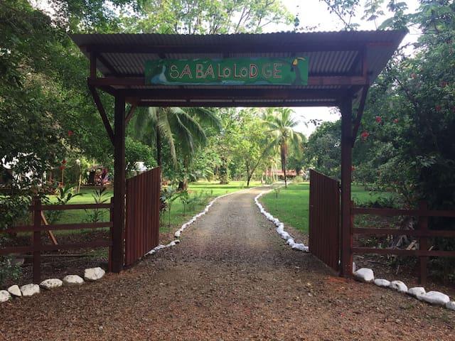 Sabalo Lodge-Casa Tienda