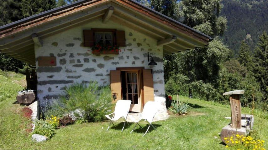 Baita alpina in Val Borzago, comune di Pelugo. - Pelugo
