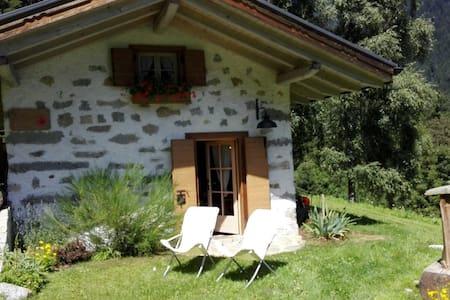 Baita alpina in Val Borzago, comune di Pelugo. - Pelugo - Blockhütte