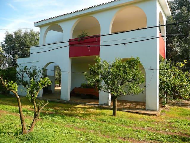 Casa Rurale tra olivi e mare vicino - Maruggio - House
