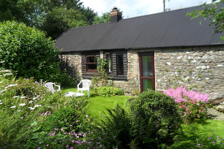 Blaenpant Cottage - Rosebush - House