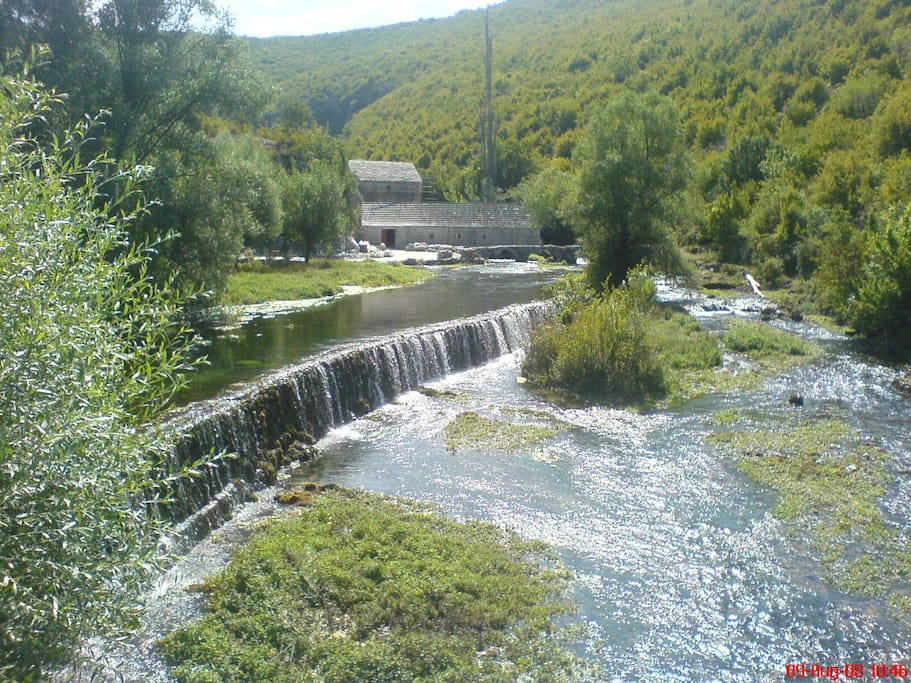 water spring Ruda