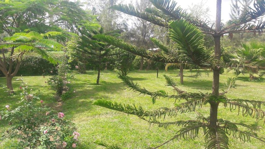 OGERA FARM