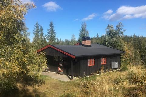 Cabin in Norway - (Krokskogen/Nordmarka/Oslo)