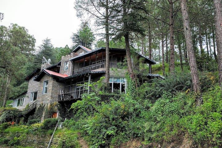 Ekam: Luxury Mountain VillaRoom2@chail -All Meals