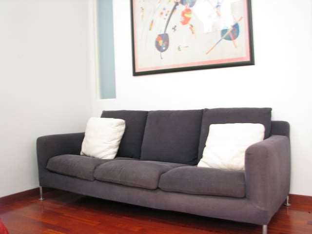 Nice couch in TREVISO - Treviso - Daire