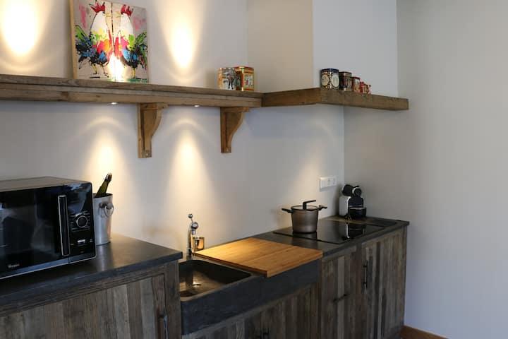 Cottage in Vrouwenpolder