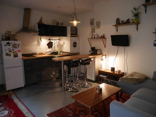 Appartement cosy 27 m2 avec cour privée
