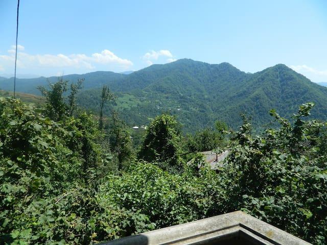 Сдается дом для отдыха на природе, рядом с Батуми