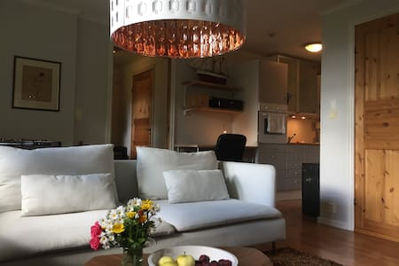 Private apartment in Lier, between Oslo - Drammen