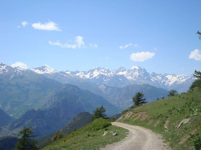 Chalet montagne moussiere