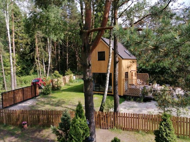 Skandynawski domek z widokiem na jezioro