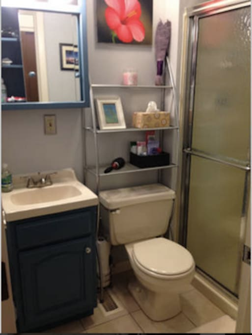 Shared bathroom #2 with shower. 2 extra half bathrooms available too.