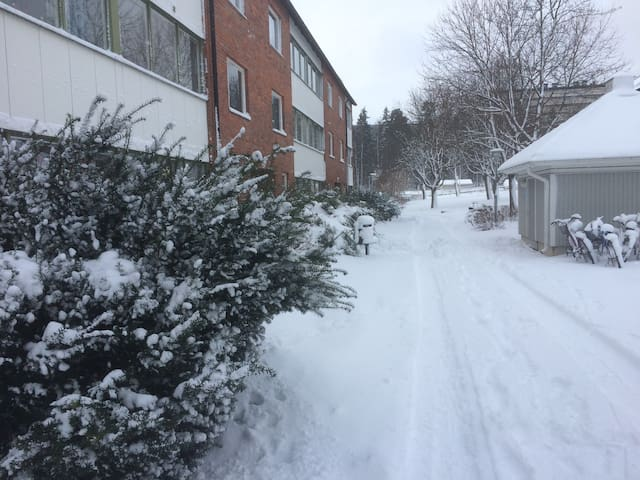 Winter, a snowy street to approach to the entrance. It looks different, of course, in other seasons.