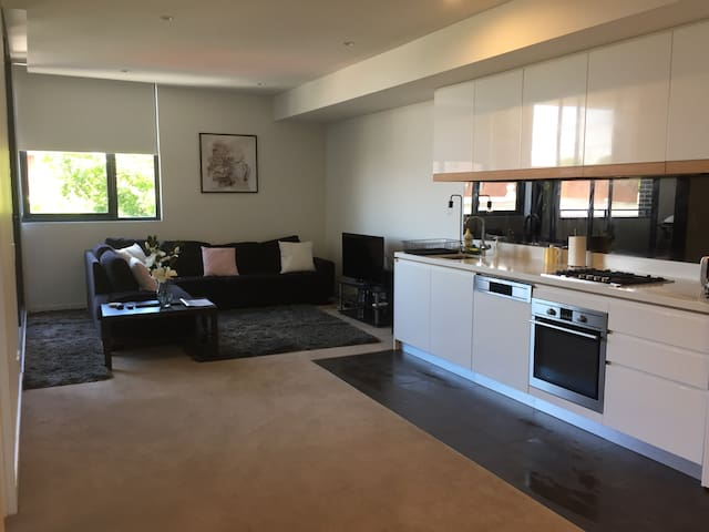 Brand New Rosebery Apartment