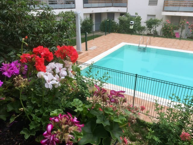 Agréable T3 avec piscine Lyon 7